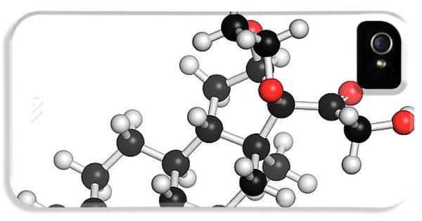 Budesonide Corticosteroid Drug Molecule IPhone 5 Case by Molekuul
