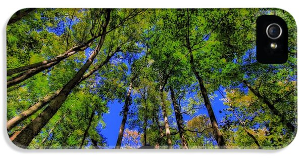Breathe iPhone 5 Case - Bugs Eye View Of The Forest by Dan Sproul