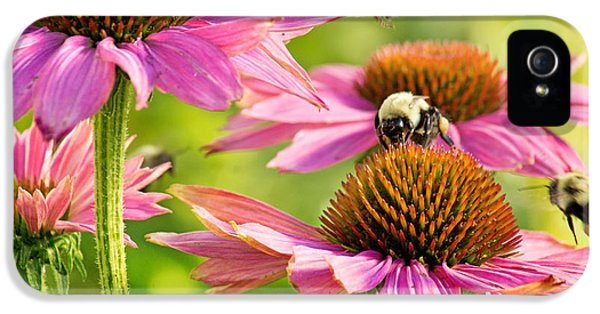 Bumbling Bees IPhone 5 Case by Bill Pevlor