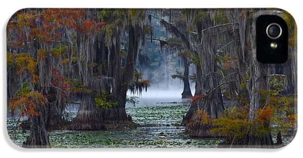 Caddo Lake Morning IPhone 5 Case