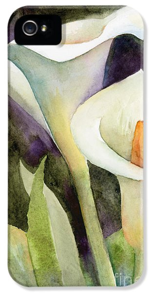 Lily iPhone 5 Case - Calla Lilies by Amy Kirkpatrick