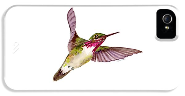 Calliope Hummingbird IPhone 5 Case by Amy Kirkpatrick