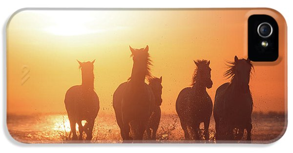 French iPhone 5 Case - Camargue Angels by Rostovskiy Anton