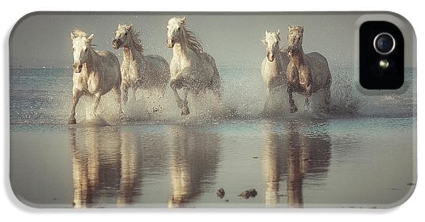 French iPhone 5 Case - Camargue Horses by Rostovskiy Anton