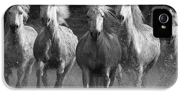 Horse iPhone 5 Case - Camargue Horses Running by Carol Walker