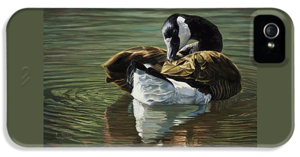 Geese iPhone 5 Case - Canadian Goose by Lucie Bilodeau