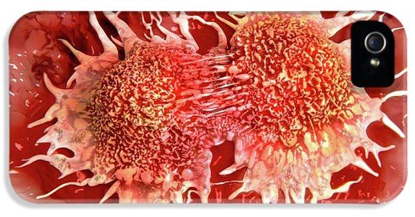 Cancer Cells Dividing IPhone 5 Case