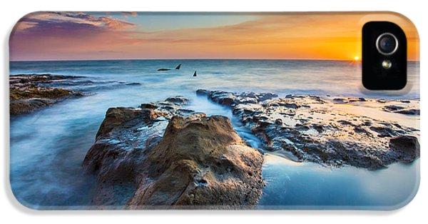Cape Arago Orcas IPhone 5 Case by Robert Bynum