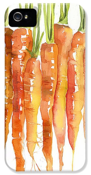 Carrot Bunch Art Blenda Studio IPhone 5 Case by Blenda Studio