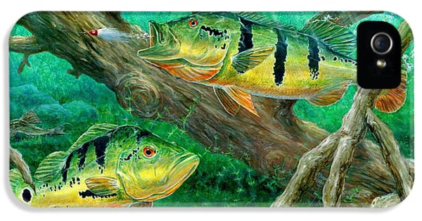 Catching Peacock Bass - Pavon IPhone 5 Case