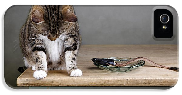 Caught In The Act IPhone 5 Case by Nailia Schwarz