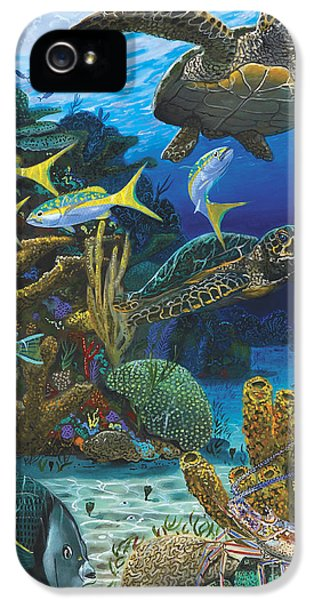 Cayman Turtles Re0010 IPhone 5 Case by Carey Chen