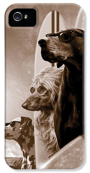 Dog iPhone 5 Case - Changes by Garry Walton