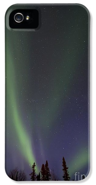 Chasing Lights IPhone 5 Case by Priska Wettstein