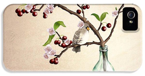 Finch iPhone 5 Case - Cherry Coke by April Moen