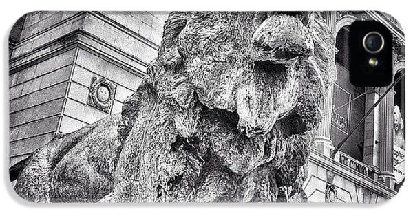 Animal iPhone 5 Case - Lion Statue At Art Institute Of Chicago by Paul Velgos