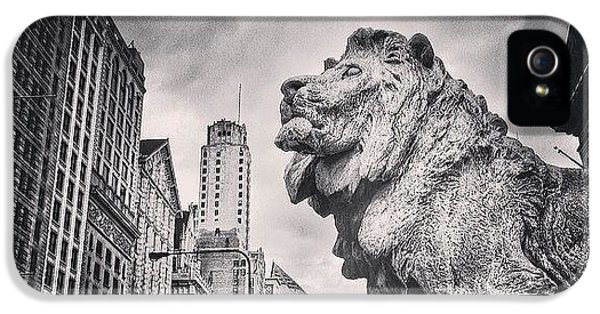 Architecture iPhone 5 Case - Art Institute Of Chicago Lion Picture by Paul Velgos