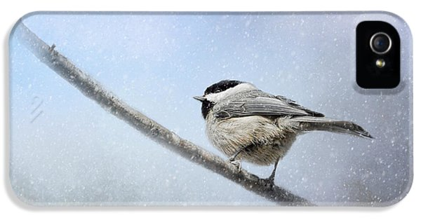 Chickadee In The Snow IPhone 5 Case