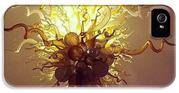 Light iPhone 5 Case - Chihuly In The Lobby by Jill Tuinier