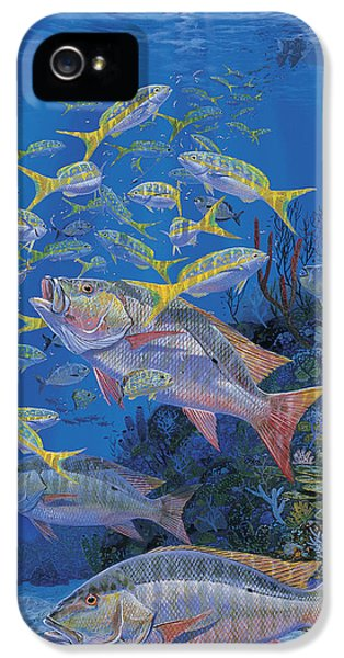 Chum Line Re0013 IPhone 5 Case by Carey Chen