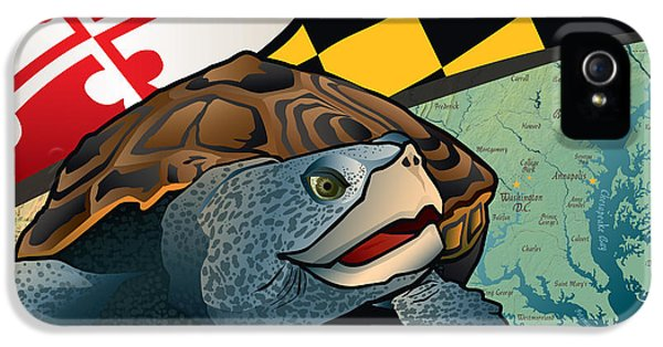 Citizen Terrapin Maryland's Turtle IPhone 5 Case