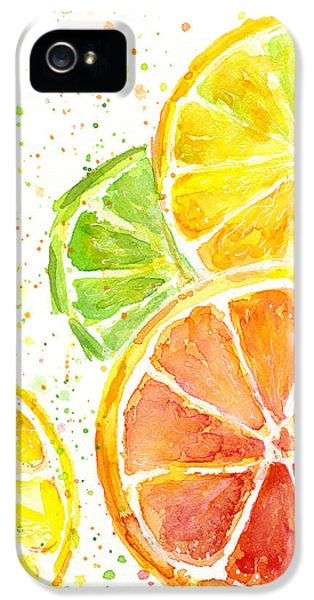 Grapefruit iPhone 5 Case - Citrus Fruit Watercolor by Olga Shvartsur