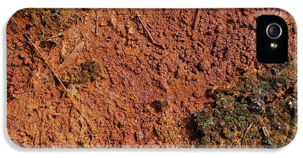Toxicity iPhone 5 Case - Close-up Of Contaminated Land by Robert Brook/science Photo Library