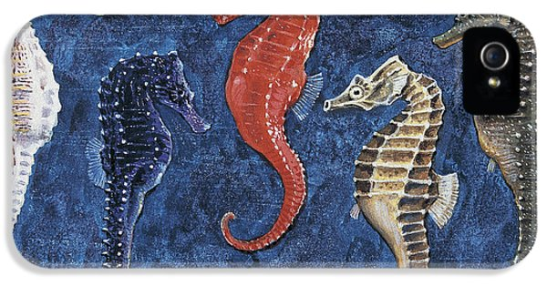 Close-up Of Five Seahorses Side By Side  IPhone 5 Case