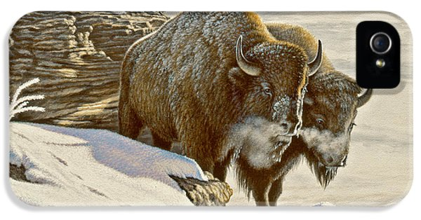 Buffalo iPhone 5 Case - 'cold Day At Soda Butte' by Paul Krapf