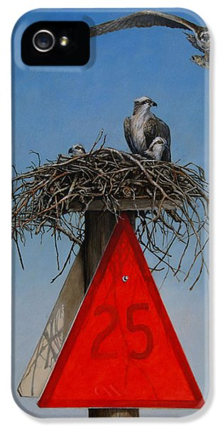Osprey iPhone 5 Case - Collaborative Effort by Dreyer Wildlife Print Collections