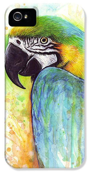 Parrot iPhone 5 Case - Macaw Painting by Olga Shvartsur