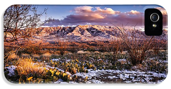 IPhone 5 Case featuring the photograph Colors Of Winter by Mark Myhaver
