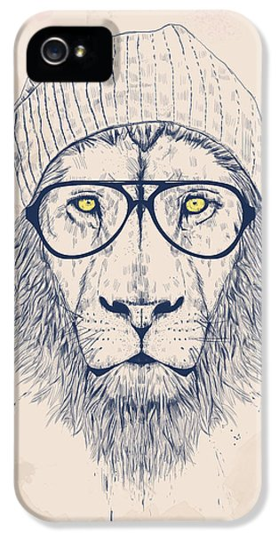 Lion iPhone 5 Case - Cool Lion by Balazs Solti
