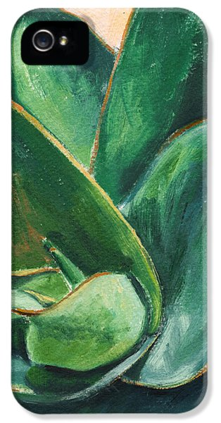 Coral Aloe 3 IPhone 5 Case by Athena Mantle