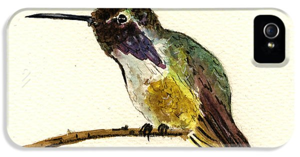 Costa S Hummingbird IPhone 5 Case by Juan  Bosco