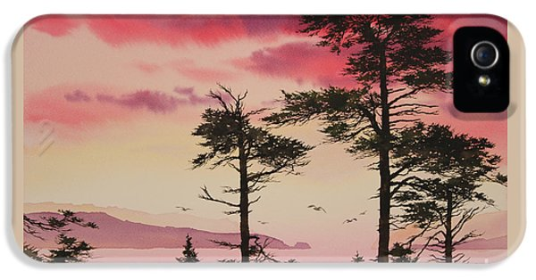 Crimson Sunset Splendor IPhone 5 Case by James Williamson