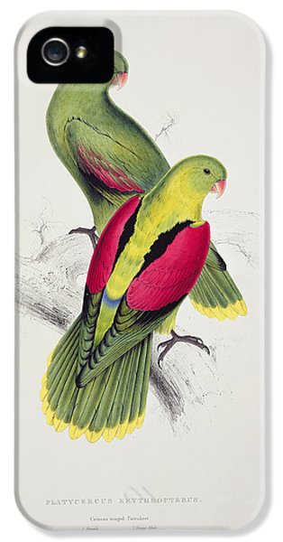 Parakeet iPhone 5 Case - Crimson Winged Parakeet by Edward Lear