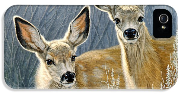 Curious Pair IPhone 5 / 5s Case by Paul Krapf
