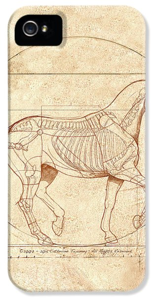 da Vinci Horse in Piaffe IPhone 5 Case by Catherine Twomey