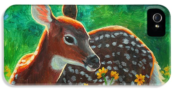 Daisy Deer IPhone 5 Case by Crista Forest