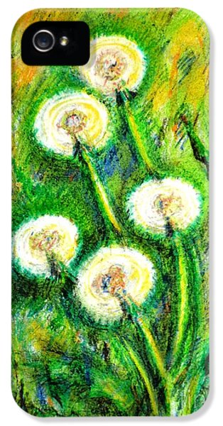 Dandelions IPhone 5 Case