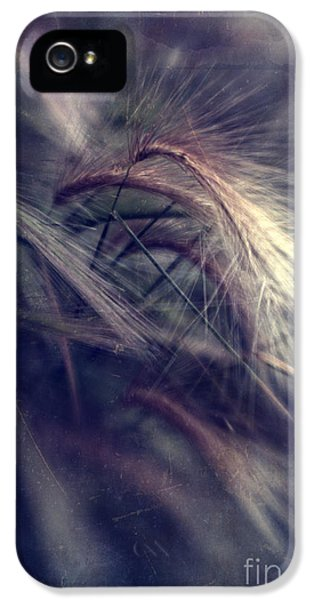 darkly series II IPhone 5 Case by Priska Wettstein