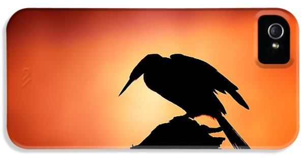 Darter Silhouette With Misty Sunrise IPhone 5 Case