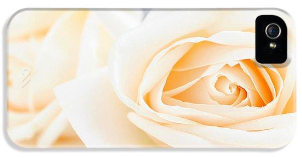 Rose iPhone 5 Case - Delicate Beige Roses by Elena Elisseeva