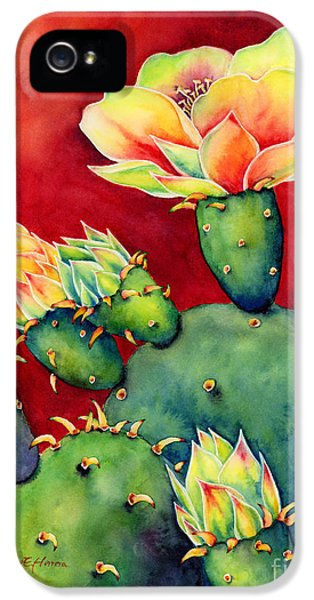Desert Bloom IPhone 5 Case by Hailey E Herrera