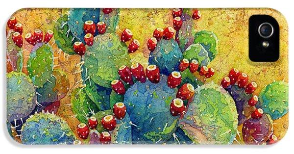 Desert Gems IPhone 5 Case