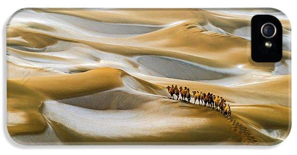 Desert Winter IPhone 5 Case