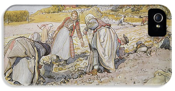 Digging Potatoes IPhone 5 Case by Carl Larsson