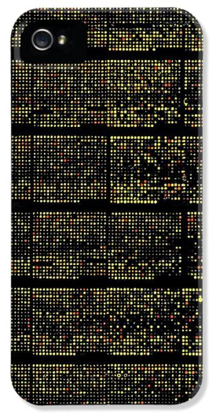Dna Microarrays IPhone 5 Case by National Human Genome Institute