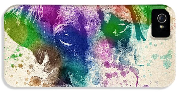 Doberman Splash IPhone 5 / 5s Case by Aged Pixel
